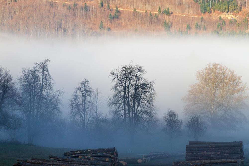 Из взвеси мелких капель воды в воздухе появляется туман