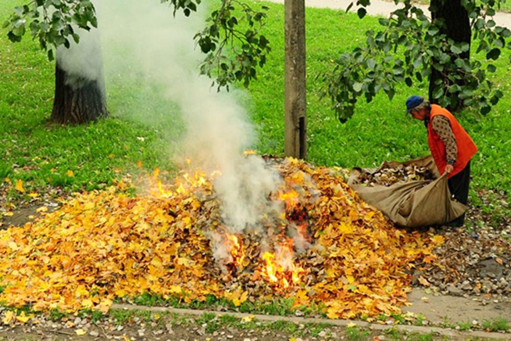 Мелкие твердые частицы в процессе горения образуют дым